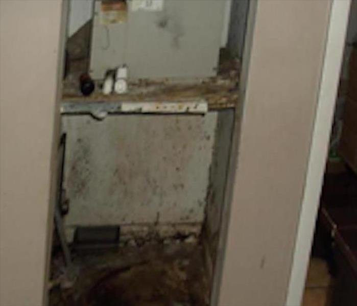 Rusty Air Handler and Mold Remediation in Wantagh