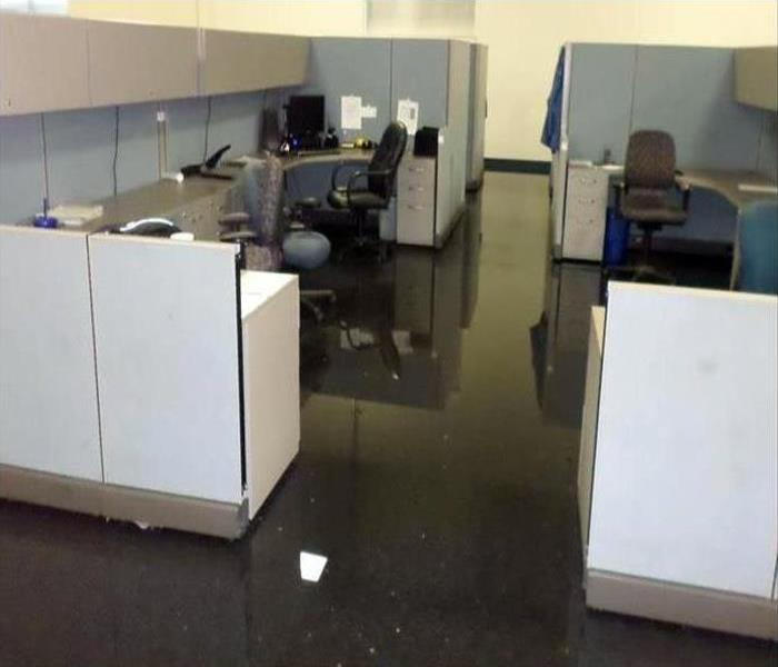 Commercial Water Damage Restoration In Bellmore