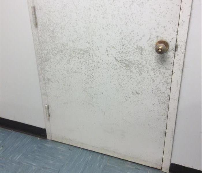 White door infested with mold growths and stains