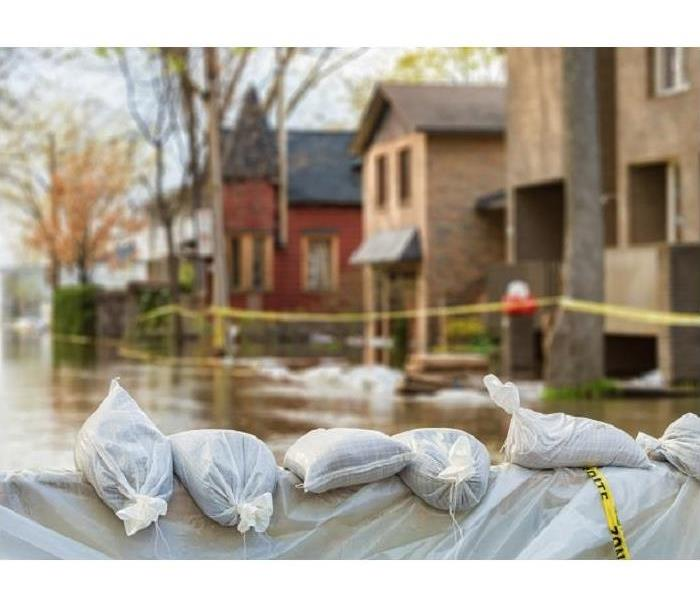 Why SERVPRO Why You Need Professional Flood Cleanup for Your Seaford Residence