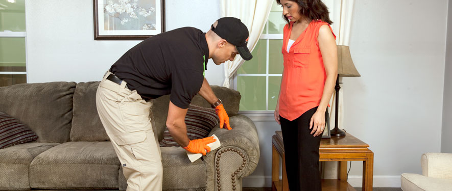Bellmore, NY carpet upholstery cleaning