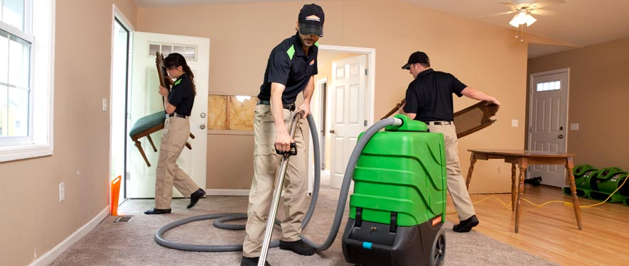 Bellmore, NY cleaning services